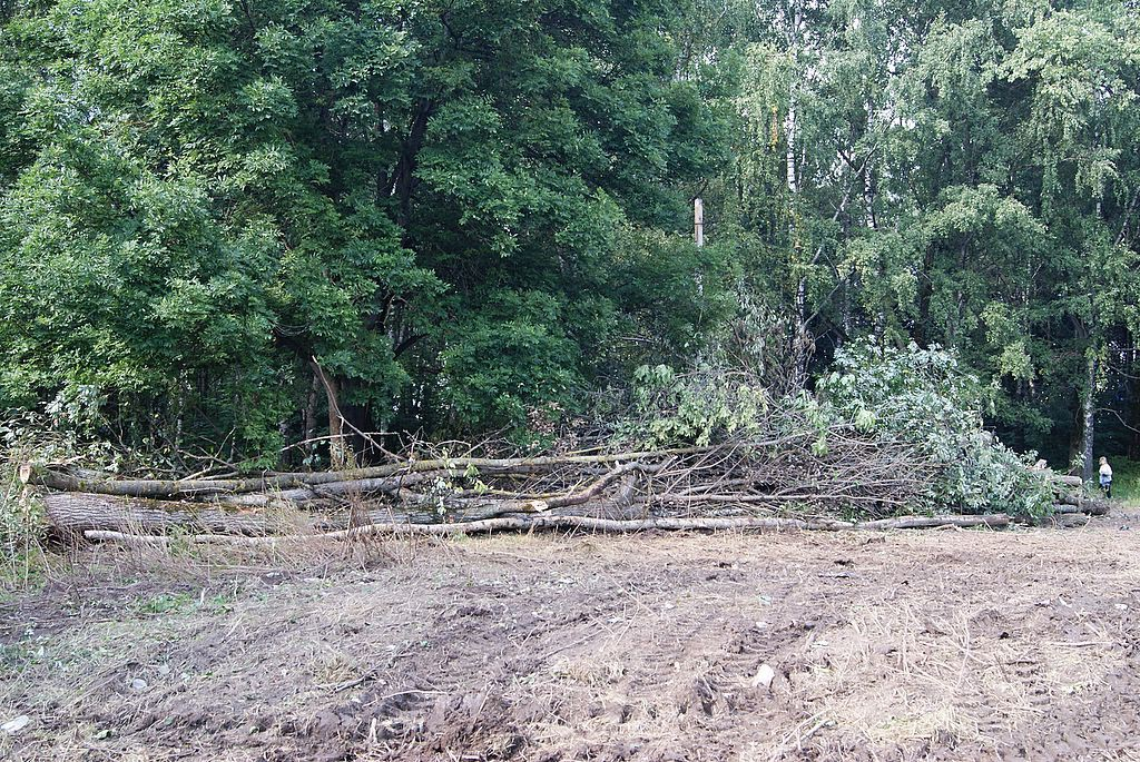 keytown.me строительство храма лесопитомник