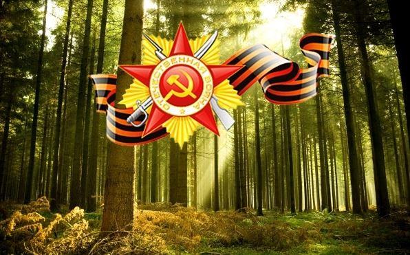 лес победы мы помним Смоленск