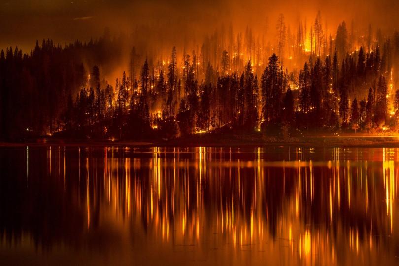 пожар Смоленск мчс лес