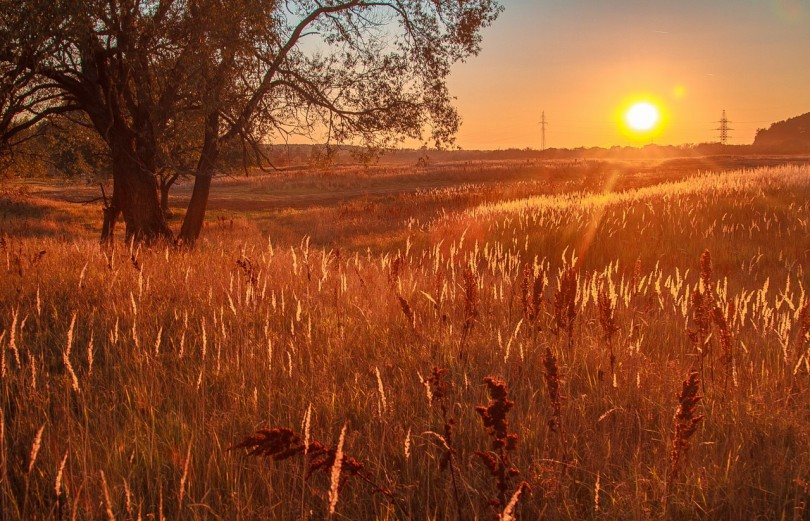 фото смоленска денис максимов