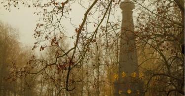 осень туман Максимов Смоленск