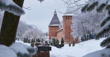 зима снег иней 2016 мороз фото Максимов Денис