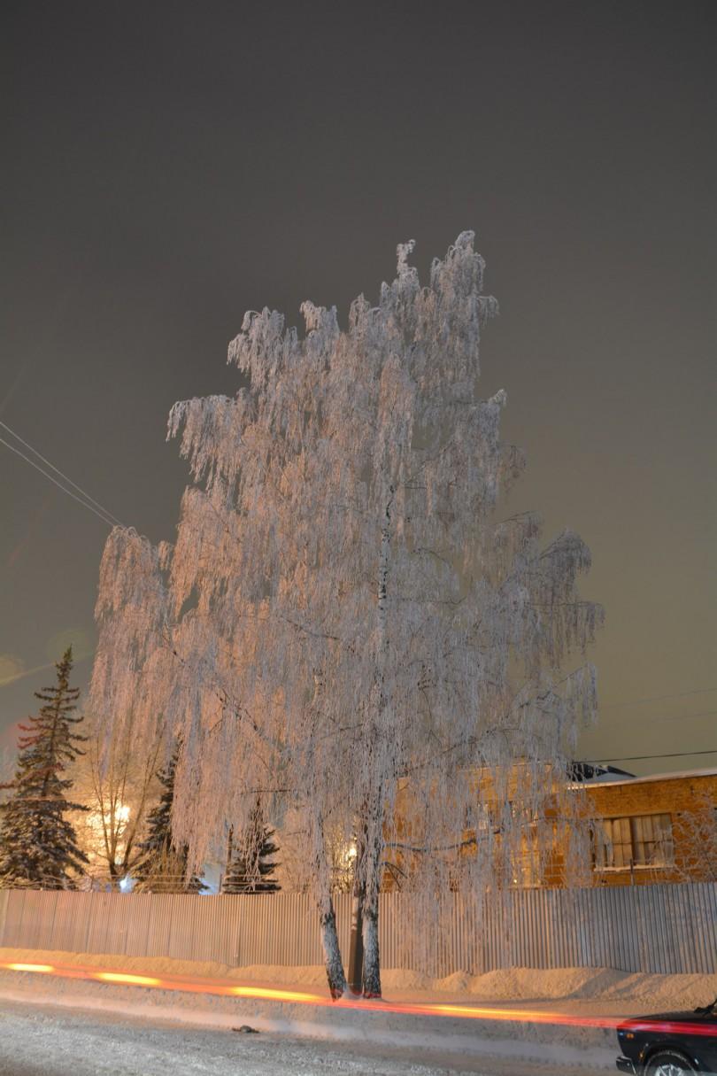 зима смоленск иней 2016