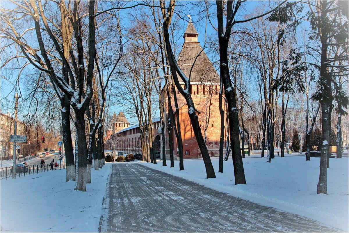 вергуны, зимняя фотосессия в смоленске прекрасней всех вокруг