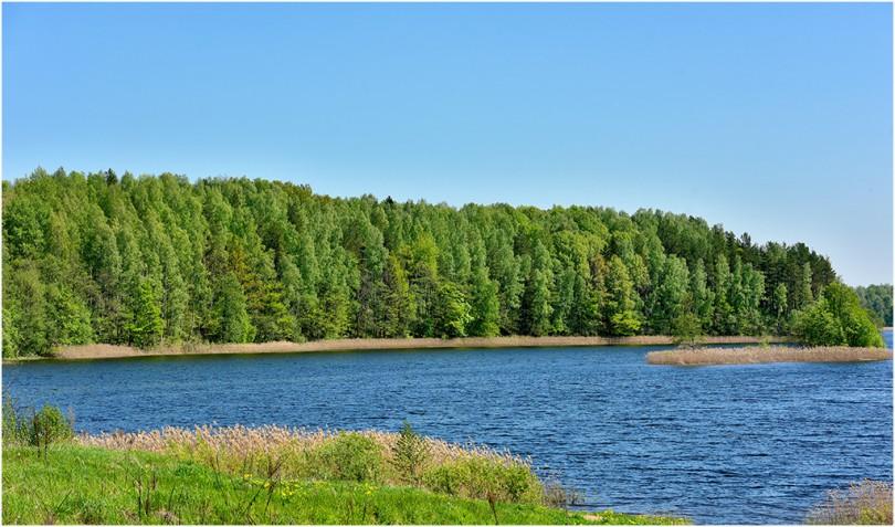 14 мая 2016 г., озеро Диво, Демидовский район. Фотограф: Геннадий Дубино