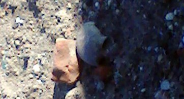 на набережной днепра нашли кости человека