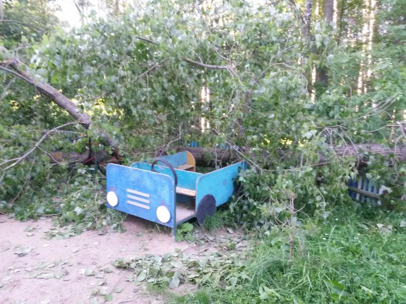 детская площадка на королевке в Смоленске. Деревья после урагана упали