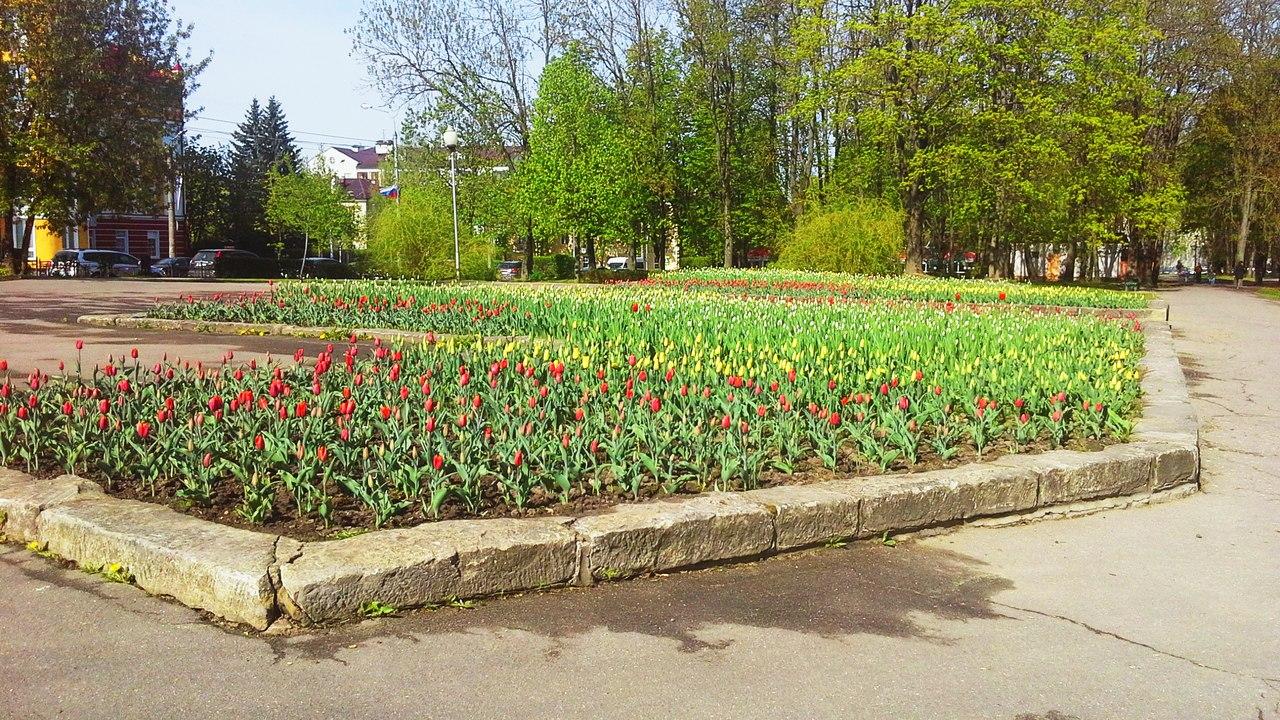 клумба Смоленск