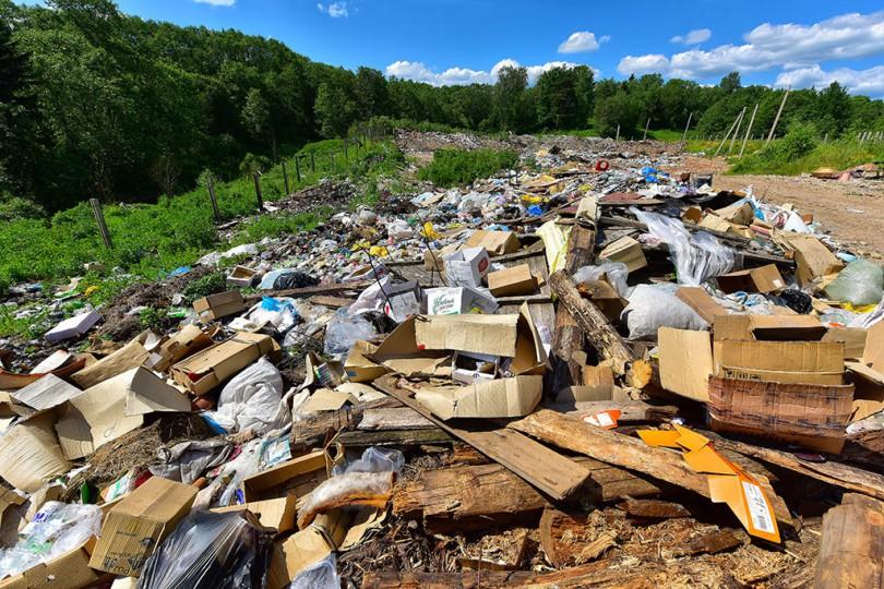 19 июня 2016 г. Пржевальская мусорная свалка.