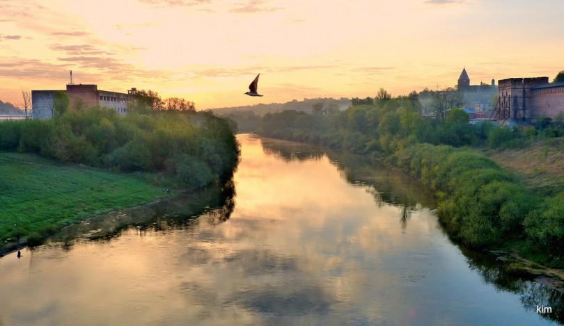 редакая птица долетит до середины днепра