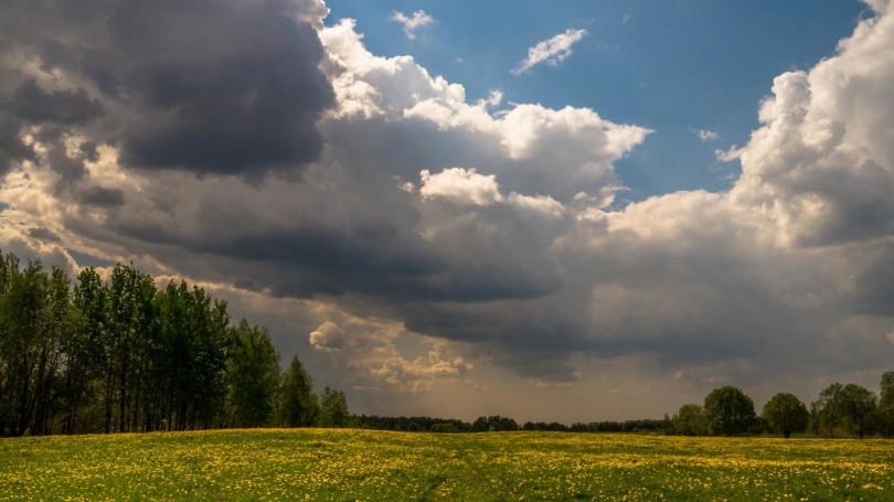 Олег козлов фото природа