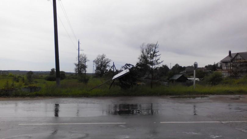 дорогобуж ураган