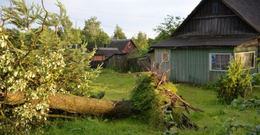Демидов ураган ливень