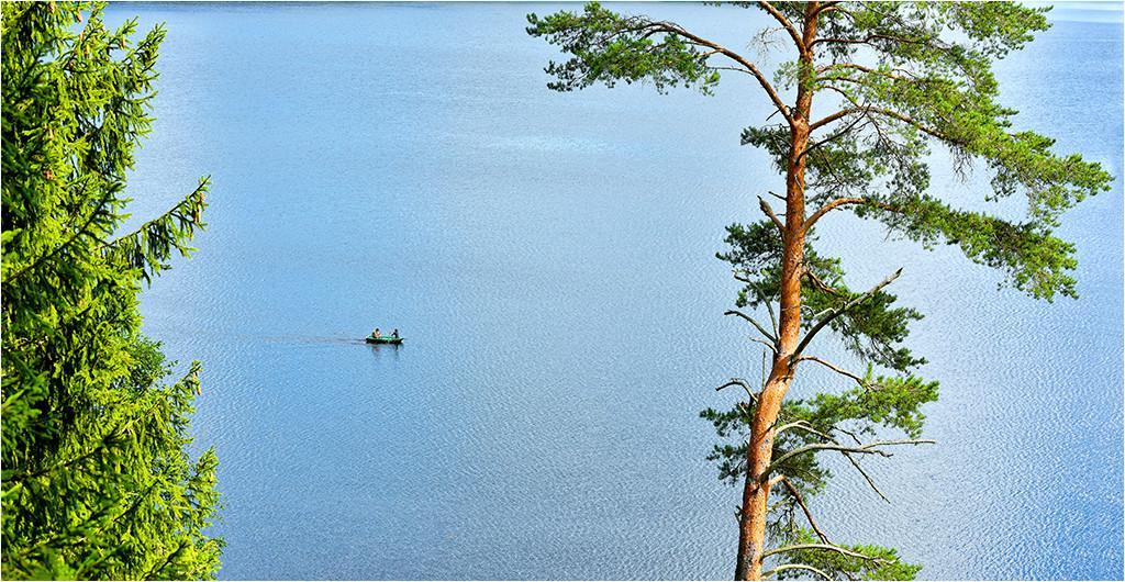 10 августа 2016 г., озеро Сапшо. Демидовский район