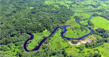 река Ельша, Демидовский район.03.06.2016