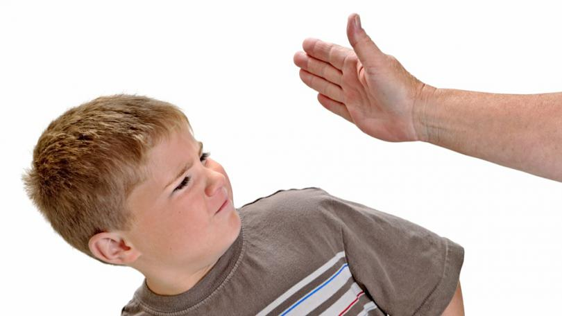 Смоляне протестуют против запрета бить детей