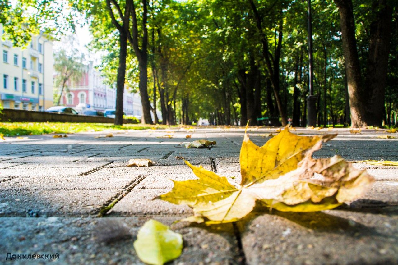 осенний смоленск фото