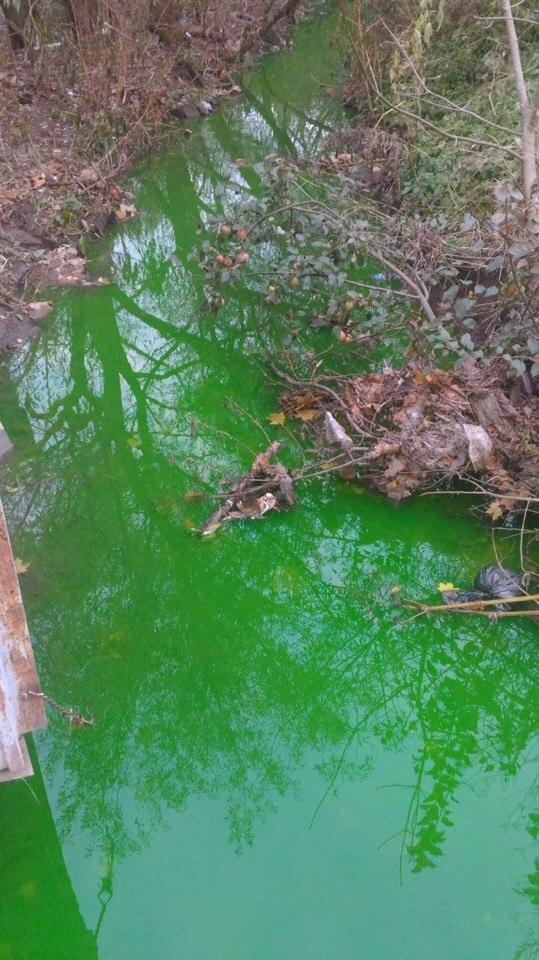 В Смоленске зелёная вода вылилась в реку ясенную
