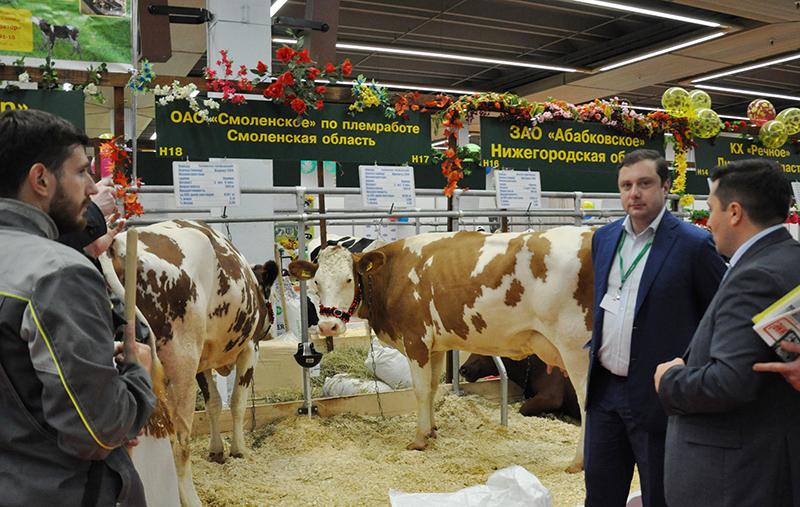 губернатор смоленской области принял участие в сельхоз выставке в москве
