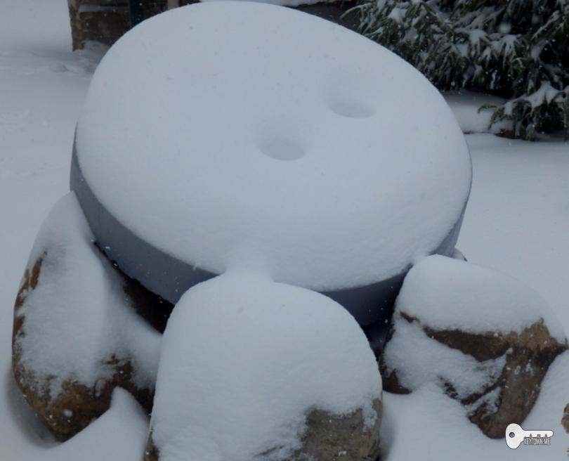 Пуговка после снегопада