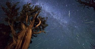 Метеоритный поток Ориониды достигнет своего пика в ночь на субботу