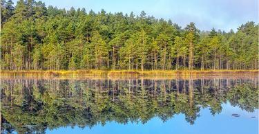 осень в национальном парке смоленское поозерье