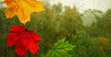 осень погода дождь