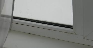 DSCN7353