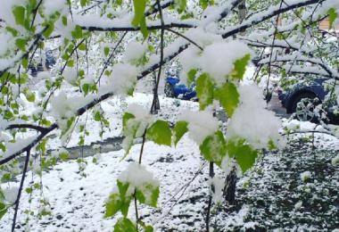 снег в смоленске