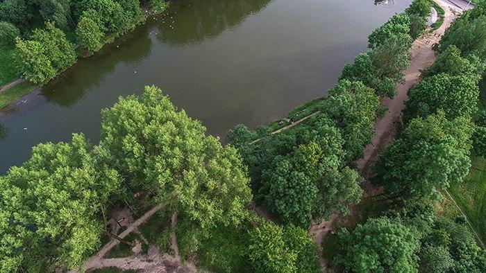 Впроект будущего парка «Соловьиная роща» граждане Смоленска смогут внести предложения