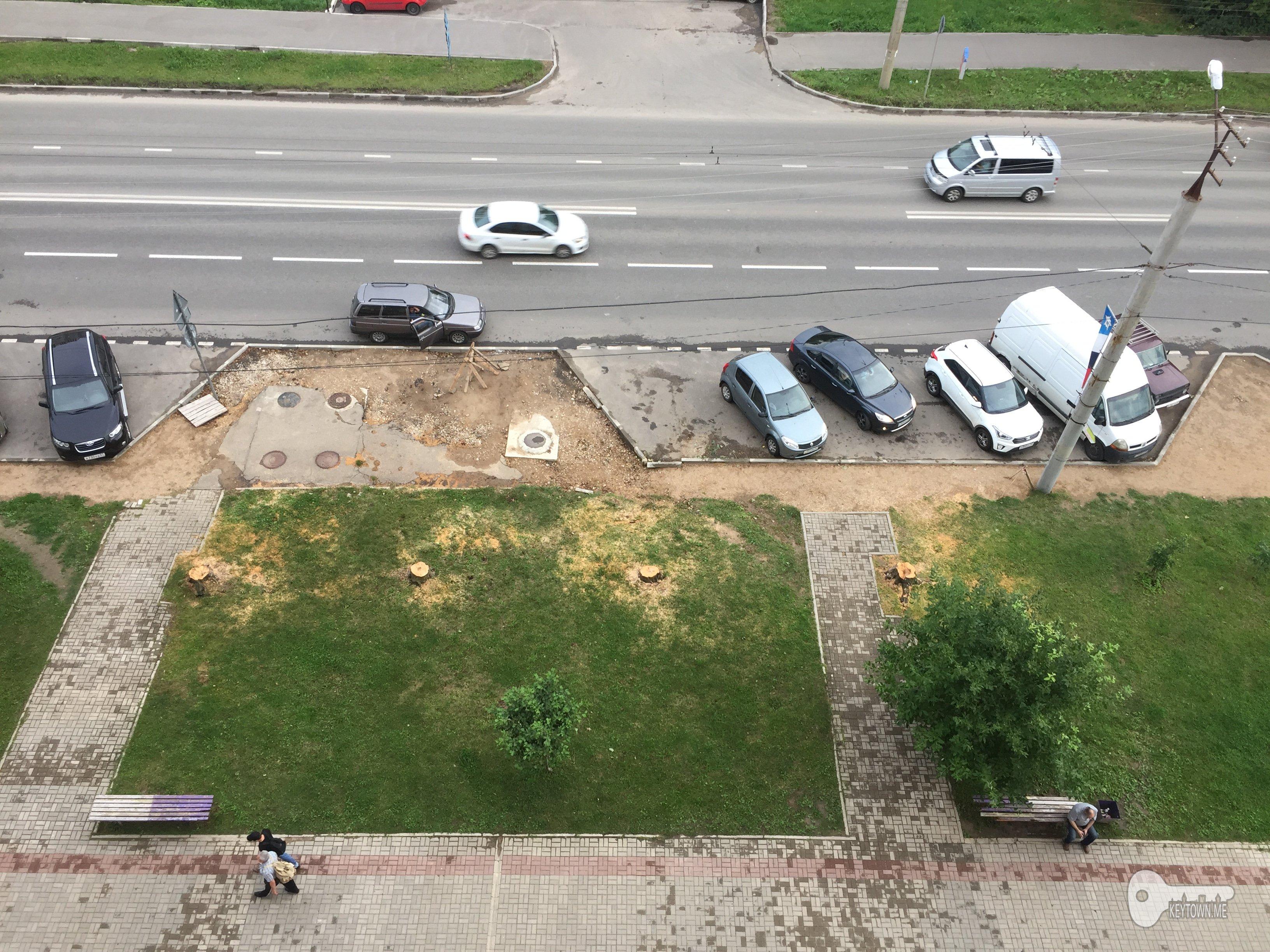 вырубка деревьев, Зеленстрой